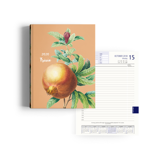 Picture of Pomegranate Diary Management