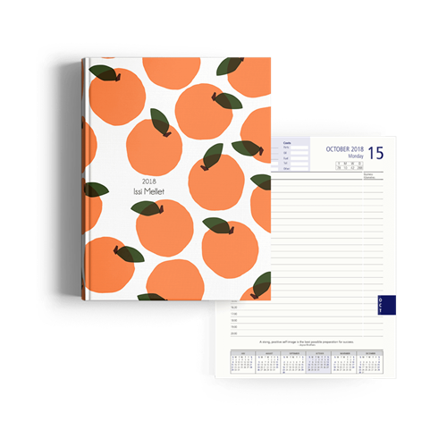 Picture of My Clementine Diary Management