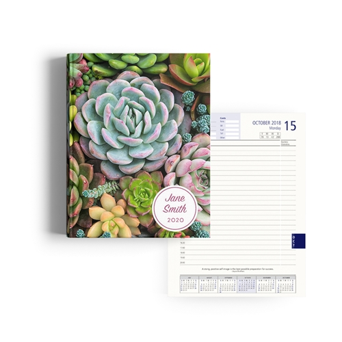 Picture of Succulent Diary Management